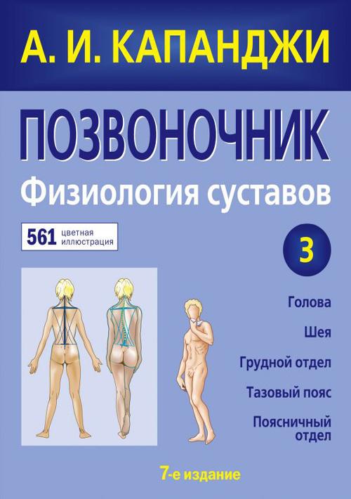 Позвоночник. Физиология суставов. Схемы механики человека с комментариями