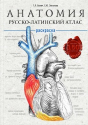Анатомия. Русско-латинский атлас-раскраска