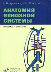 Анатомия венозной системы в схемах и рисунках. Учебное пособие